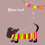 Greeting card with Dachshund dog Stock Photo
