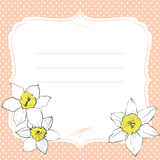 Greeting card with daffodil flowers. Background in polka dots. Yellow and pink colors Stock Photos