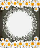 Greeting card with daisies and abstracts backgroun Royalty Free Stock Photography
