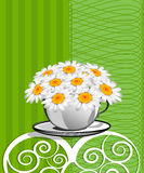 Greeting card with daisies and abstracts backgroun Royalty Free Stock Image