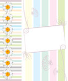 Greeting card with daisies and abstracts backgroun. D. Chamomile flower Stock Photography