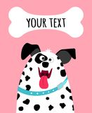 Greeting card with dalmatian dog face. Greeting card with happy dalmatian dog face and place for text on pink background, vector illustration Royalty Free Stock Photos