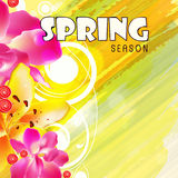Greeting card design for Spring Season. Royalty Free Stock Photography