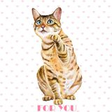 Greeting card design. Watercolor portrait of bengal cute cat with dots, stripes  on hearts background Royalty Free Stock Photo
