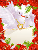 Greeting card with doves. Greeting card with white doves and roses Stock Photography