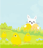 Greeting Card with Easter bunny and sweet chicks Stock Photos