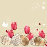 Greeting card with eggs and tulips Royalty Free Stock Image