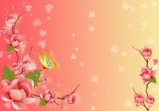 Greeting Card. Flower greeting card Royalty Free Stock Photos
