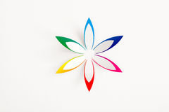 Greeting card with flower stock photography