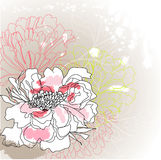 Greeting card with flowers Royalty Free Stock Images