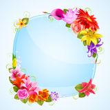 Greeting card with flowers Stock Images