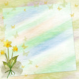 Greeting card with flowers. And space for your own text Stock Images