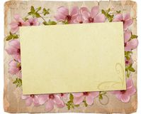 Greeting card with flowers Royalty Free Stock Photo