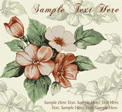 Greeting card. Flowers. Beautiful background. Stock Photos
