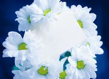 Greeting card and flowers Royalty Free Stock Photo