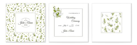 Greeting card with flowers bouquet - white Sweet pea. stock illustration
