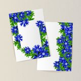 Greeting card with flowers. For congratulations, labels, price tags Royalty Free Stock Images
