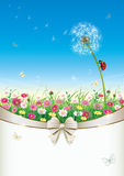 Greeting card with flowers and dandelion Royalty Free Stock Images
