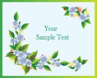 Greeting card with flowers and ladybirds Stock Image