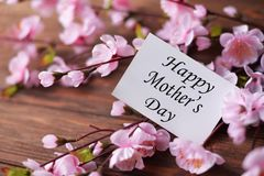 Greeting card with flowers pink with love gift for  Mother`s Day. For inscription text Royalty Free Stock Images