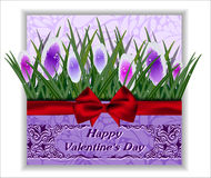 Greeting card  flowers. Valentine's Day. Royalty Free Stock Photo
