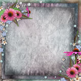 Greeting card  flowers Stock Photo
