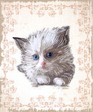 Greeting card with  fluffy kitten Royalty Free Stock Photo