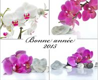 Greeting card in french Royalty Free Stock Image