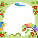 Greeting card with funny insects. Royalty Free Stock Images