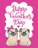 Greeting Card with funny Pug Royalty Free Stock Photography