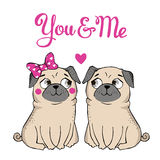 Greeting Card with funny Pug Stock Photo