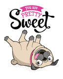 Greeting Card with funny Pug Stock Image