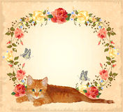 Greeting card with ginger cat and roses. Vintage greeting card with ginger cat and roses Stock Image