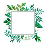 Greeting card  green leaf watercolor vector illustration