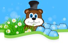 Greeting card on Groundhog day Royalty Free Stock Photo