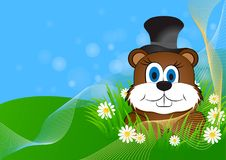 Greeting card on Groundhog day Royalty Free Stock Images