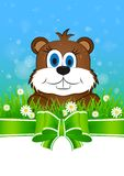Greeting card on Groundhog day Royalty Free Stock Image