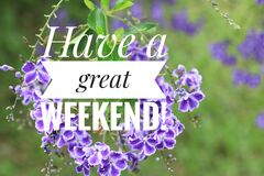 Free Greeting Card - Have A Great Weekend. With Beautiful Purple Flowers Background. Nice Weekend Concept Stock Images - 174364834