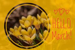 Greeting card hello march Welcome card the beginning of spring. Greetings to the spring royalty free stock images