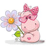 Greeting card Hippo with flower Stock Photos