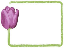 Greeting card or invitation card vector illustration