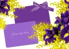 Greeting card with irises and Mimosas. Royalty Free Stock Photography