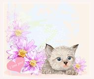 Greeting card with  kitten Royalty Free Stock Photography