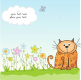 Greeting card with kitten Stock Photography