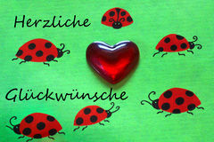 Greeting card, ladybirds and heart Royalty Free Stock Photo