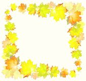 Greeting card with maple leaves. Royalty Free Stock Image