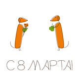 Greeting card 8 march in russian with dachshund Stock Images