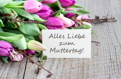 Greeting card for Mother`s Day. Greeting card to Mother`s Day with pink and violet tulips, heart and german text: Happy Mother`s Day Royalty Free Stock Photography