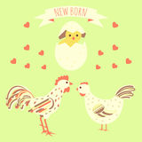 Greeting card with new born chicken Royalty Free Stock Photos