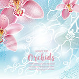 Greeting card with orchids flowers Stock Photography
